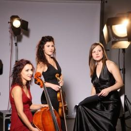 trio Carducci  Immagine in evidenza